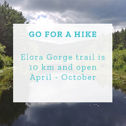Go for a Hike