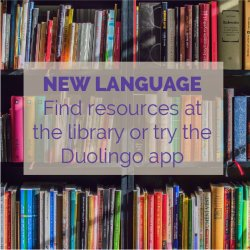 Learn a New Language Duolingo Activity Idea