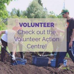 Volunteer Action Centre Activity Idea
