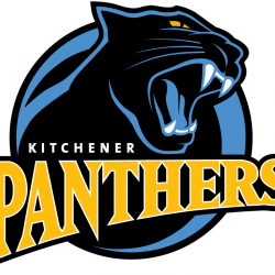 Kitchener Panthers Baseball Opportunity